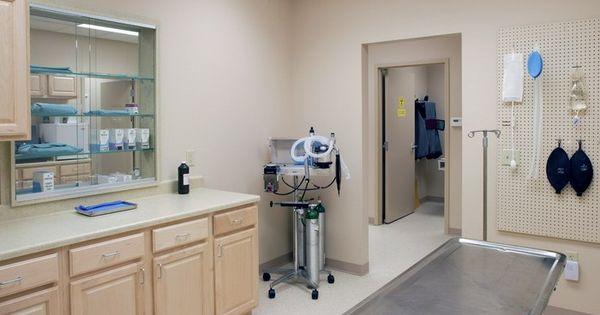 Vet Clinic Interior Design Fort Street Veterinary Clinic Veterinarian Medicine Pinterest