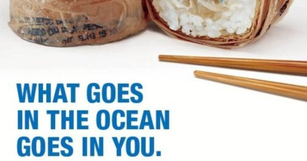 Disturbing poster from the Surfrider Foundation makes the effects of plastics in