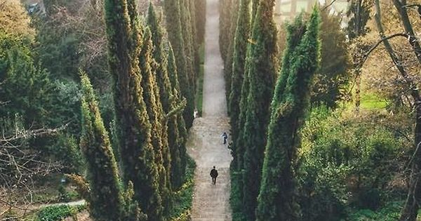 Guisti gardens in verona italy why not pinterest for Jardin d italie chateauroux