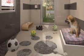 Resultado De Imagen De Luxury Dog Hotels Hotel Para Perros