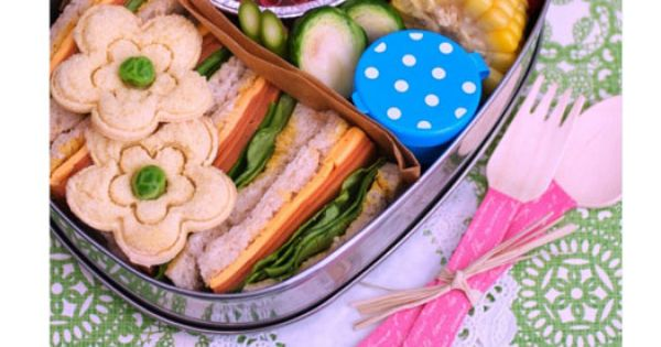 cute picnic idea and school lunches
