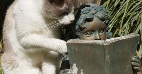 You always need garden statues - and a cat.