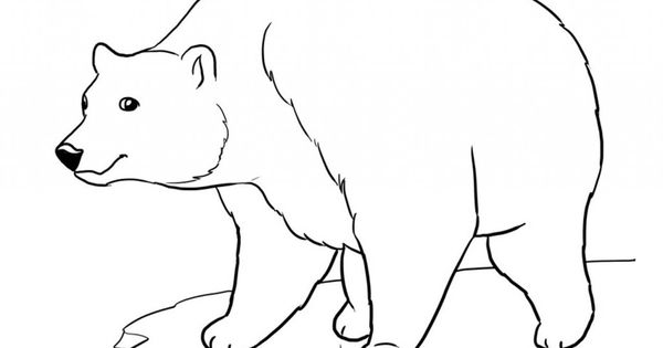 google polar bear coloring pages-#5