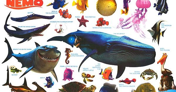 Finding nemo characters names for Disney fish names