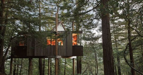 World S Most Incredible Treehouse Hotels Photos