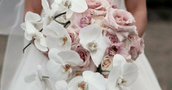 ein edler brautstrau mit wei en orchideen und rosen a bridal bouquet with white orchids and. Black Bedroom Furniture Sets. Home Design Ideas