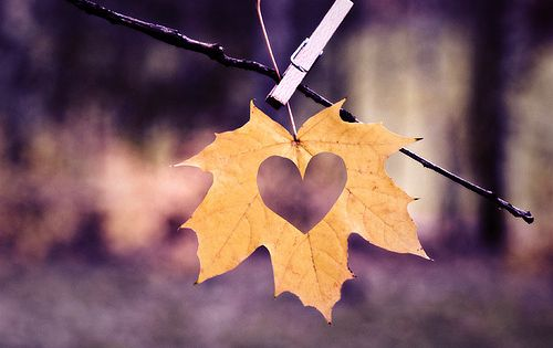 A heart cut-out in an autumn leaf - what a lovely idea