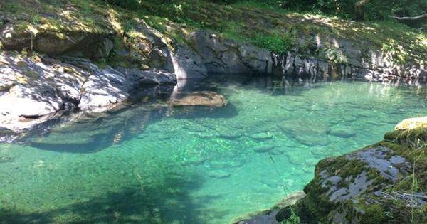 Wilson River Oregon Art And Natural Beauty Pinterest Oregon Coupon Codes And Hammocks