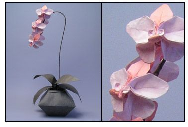 Orchids From Origami Origami Orchid Origami Flowers Origami