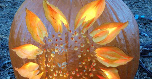 Happy Halloween! | Sunflowers, Pumpkin carving and Pumpkin ...