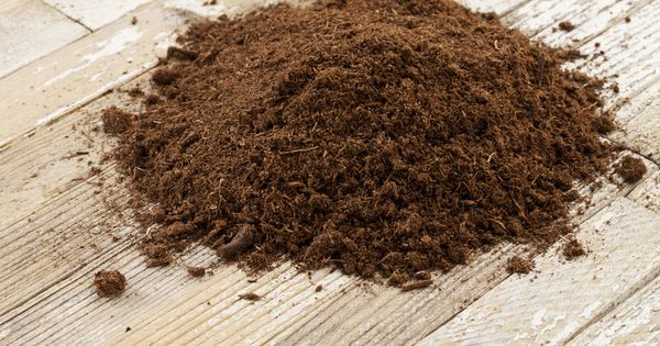 Add peat moss to lower soil ph the results of a soil ph - Best vegetable garden soil amendments ...