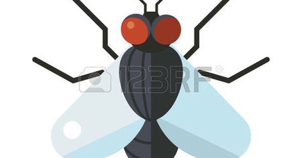 Bug House Fly Insect And Cartoon Black Fly Insect Insect Hairy Legs Biology Housefly Bluebottle Fly Insect Species Calliphor Insect Species Fly Logo Insects