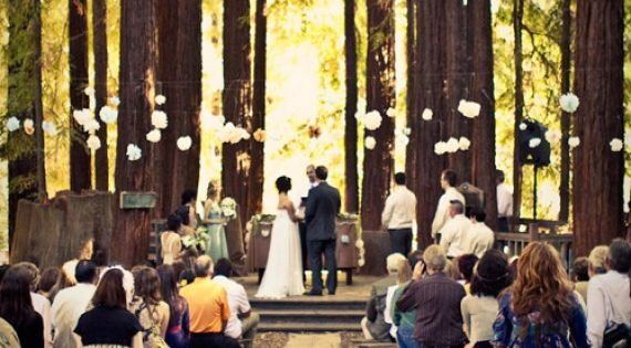 MY DREAM FOREST WEDDING! I want an outside wedding!