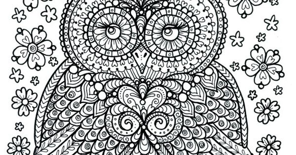 Poster to Color Owl Dreamer Coloring Poster Large 11 x 14 size