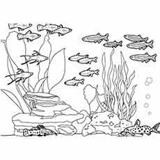 35 Best Free Printable Ocean Coloring Pages Online Ocean Coloring Pages Fish Coloring Page Coloring Pages