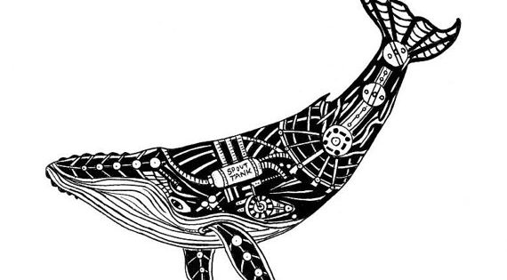 Whale drawing, Whales and Steampunk on Pinterest