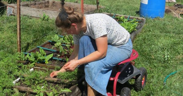 Adaptive Gardening Techniques For Gardeners With