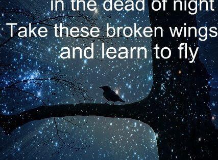 Learn fly love song