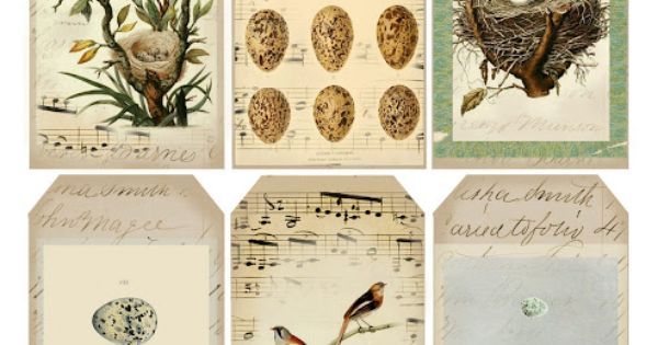 Lilac & Lavender: Gift tags - vintage bird inspired tags