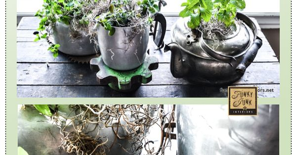 DIY Indoor Herb Gardens • Great Ideas Tutorials! Including this old kettle