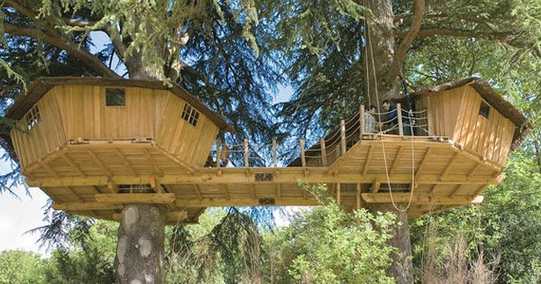 Livable tree houses art design and technology for Tree house ideas plans