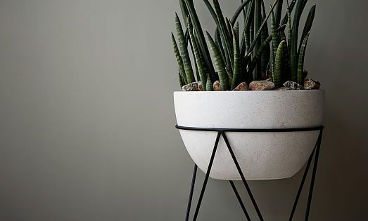 Large Plant Stand Indoor