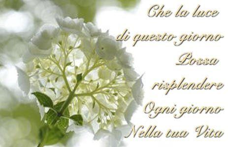 Onomastico Anna Frasi Di Auguri Video E Significato Del Nome Anna Bellissimi Fiori Giardini Bianchi Prima Comunione