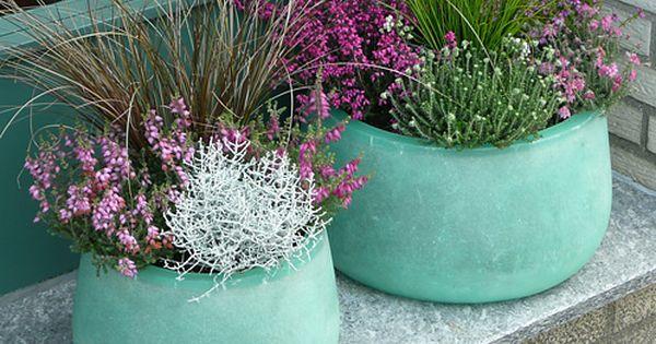 herbstbepflanzung herbstdeko pinterest herbstbepflanzung herbst und herbstdeko. Black Bedroom Furniture Sets. Home Design Ideas