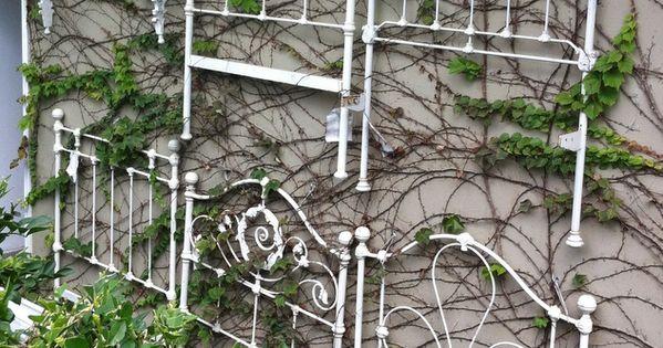 iron bed headboards used as garden trellis ...lovely idea
