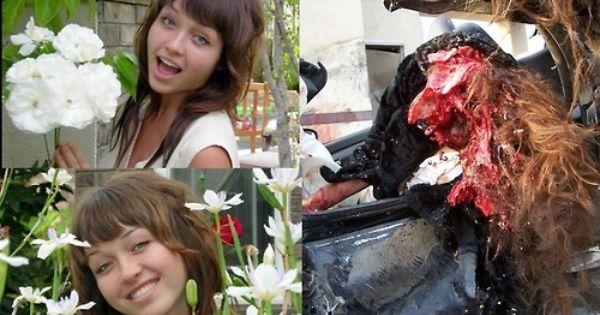Nikki Cat Car Crash Photos