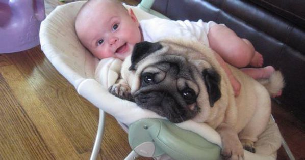 Babies who are best friends with their dogs. - yes, this is