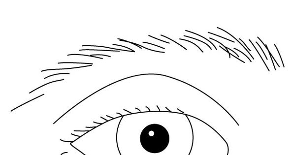 Eye Worksheets For Toddlers