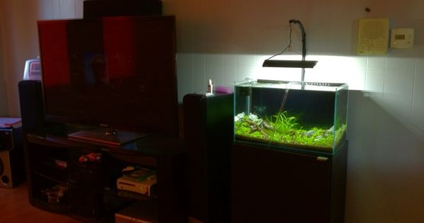 ikea besta aquarium stand google search aquarium pinterest aquarium stand and aquariums. Black Bedroom Furniture Sets. Home Design Ideas