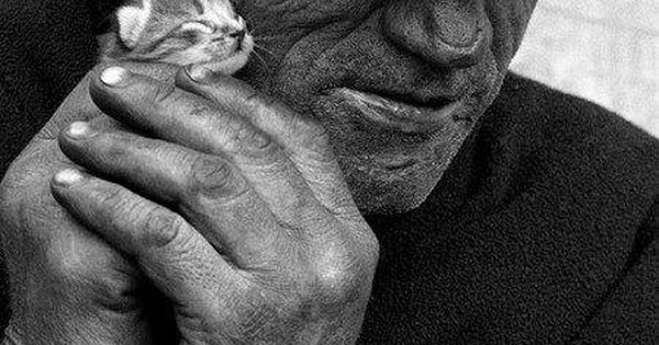 Old man and little cat