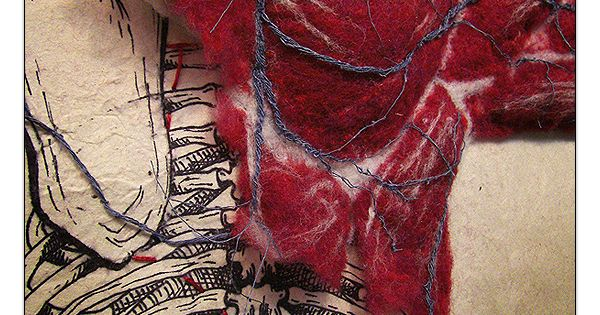 Felted Anatomy by Dan Beckemeyer | In the cabinet of ...