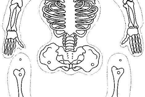 ausmalbild skelett ausschneiden f r laura pinterest. Black Bedroom Furniture Sets. Home Design Ideas