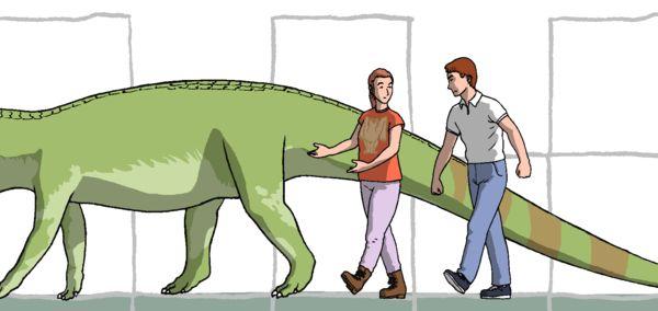 Fasolasuchus Por Cichy Animales Dibujando Net Animales Prehistoricos Nicho Ecologico Prehistorico