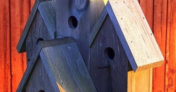 Bird House Plans And Products Creative Birdhouse
