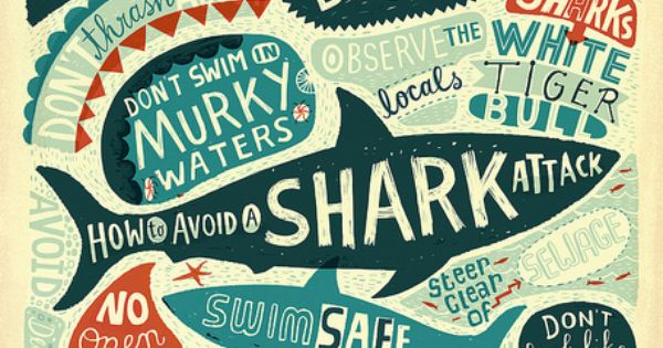 how to avoid shark attacks