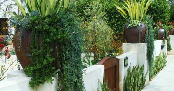 Plantes Et Am Nagement Jardin M Diterran En 79 Id Es Agaves Design Et Pots