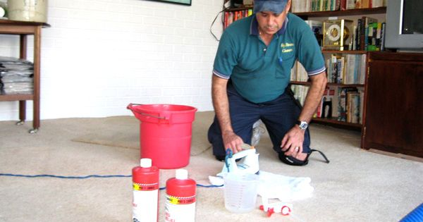 How To Get The Smell Of Pet Urine Out Carpet Smells And Dog