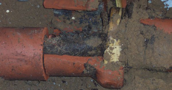 Allied All City Offers Complete Sewer Line And Sewer Main Services Including Sewer Line Replacement Repairs Mainte Sewer Line Replacement Sewer Repair Sewer