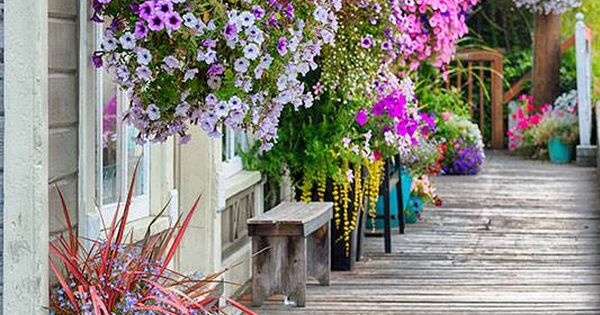 Hanging Flower Baskets Seattle : Main st in coupeville step one win the lottery two