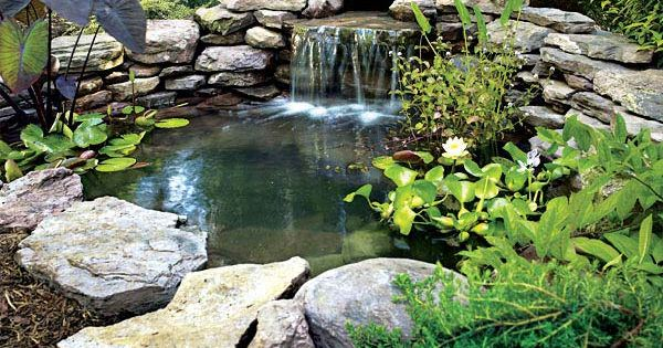 Build your own pond diy pond and garden ponds for Build your own pond