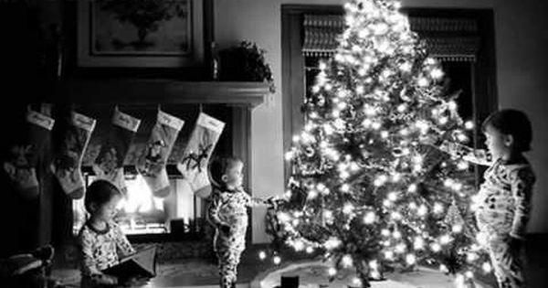 My Christmas Tree Home Alone 2 Christmas Photography Beautiful Christmas Trees Christmas Tree Decorations