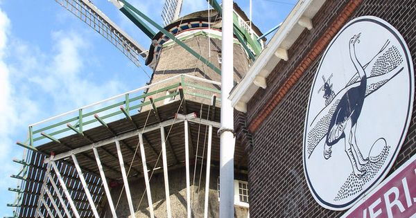 Drinking beer inside an old windmill turned brewery | 20 Things Amsterdammers
