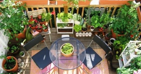 Privacy Ideas For The Balcony Gardens Landscaping