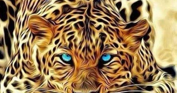 Pin By Michelle Ramsey Williams On Creatures Animals Wild Cat Art Wild Cats