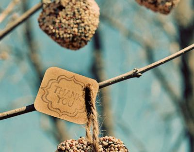 DIY Birdseed Heart for thank you gift or party favor idea.