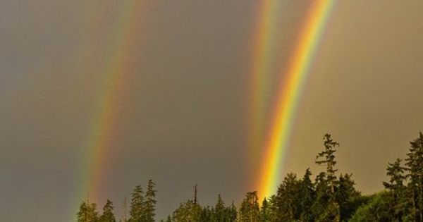 Rainbows (mirrored double rainbow pictured here)...